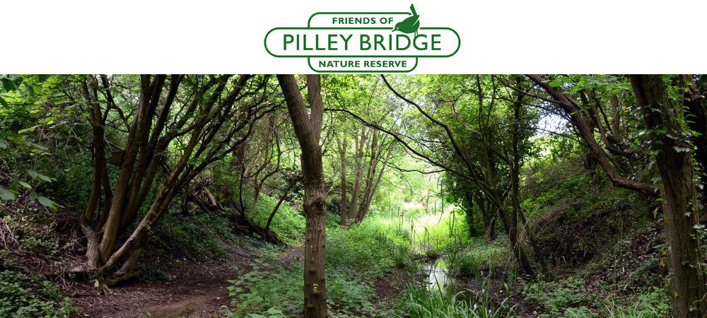 Pilley Bridge
